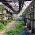 Mutanti u Černobilu? Otišla u opasnu teritoriju a tamo nije pronašla nešto neopisivno (Video)…